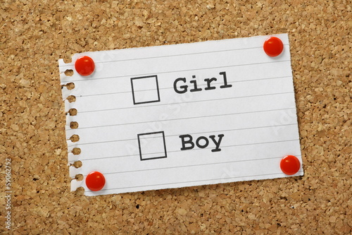 Girl or Boy Tick Boxes on a cork notice board