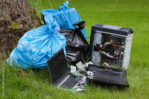 Electronics in a forest
