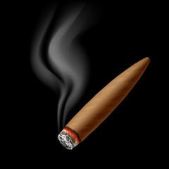 Cigar with smoke