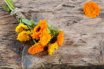 marigold on wooden background
