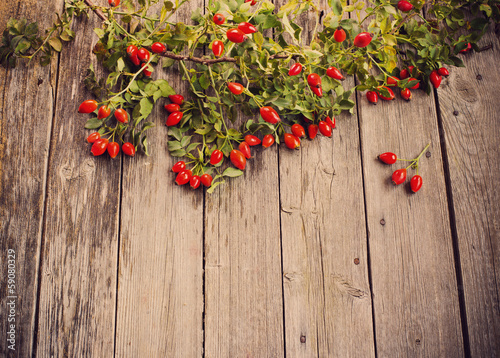 Dogrose with leafs over Wooden Background