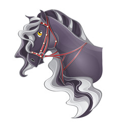 Picture of a horse's head with a bridle