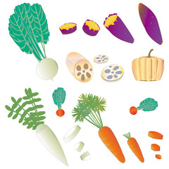 Vegetables in winter.冬の野菜 大根・にんじん