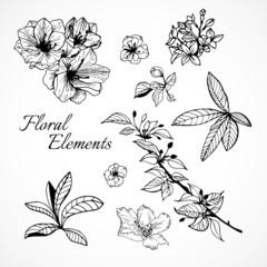 Set of floral elements