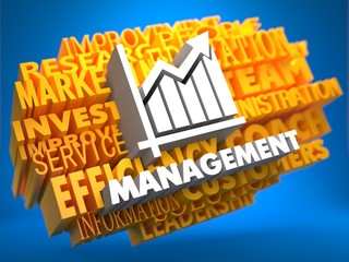 Management. Wordcloud Concept.