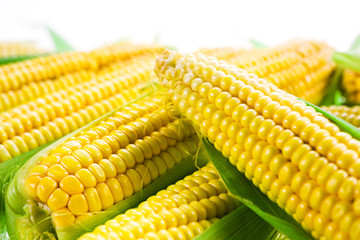 Corn with leaves. Food background