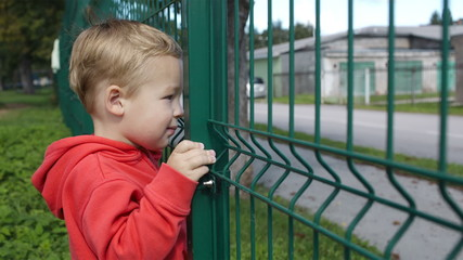 Little boy peering through a wire fence