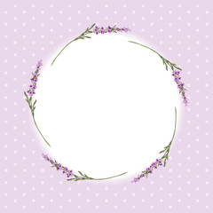 Lavender frame 2