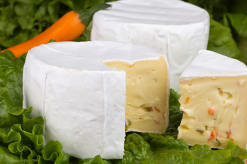 Cheese with slices of pepper on lettuce background
