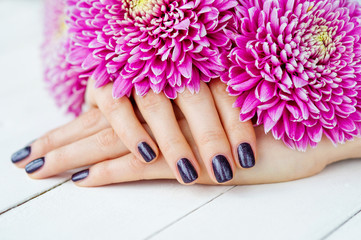 Beautiful woman hands with dark manicure and pink flowers