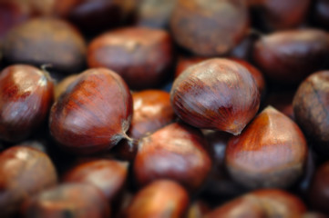 Raw chestnuts background close up macro