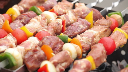 Kebab. Barbecue. Shashlik