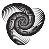 Triple Nautilus