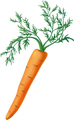 carrot with greens
