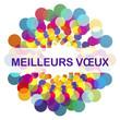 MEILLEURS VŒUX