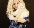 Beautiful girl holding Persian cat