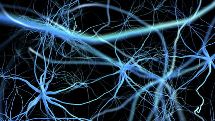 Neuron network. Flight through brain. 3D animation.