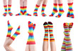 Collage of female legs in colorful socks