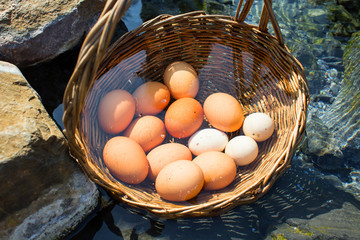 Eggs boiled in hot springs in thailand