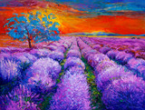 Lavender fields - 59143146