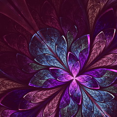 Beautiful fractal flower in blue and violet. Computer generated