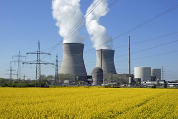 Kernkraftwerk mit Rapsfeld