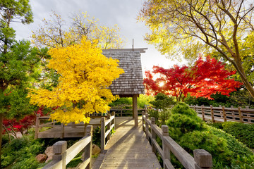 Pavilion Deck Surrounded by Autumn Foliage