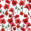 seamless watercolor pattern with poppy flowers