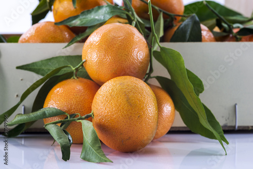 macro form mandarines