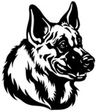german shepherd head black white