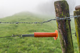 Orange plastic insulator of an electric fence