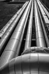 Pipelines perspective B&W image