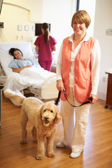 Portrait Of Pet Therapy Dog Visiting Female Patient In Hospital