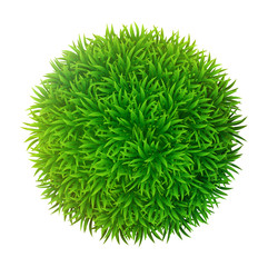 Grassy sphere
