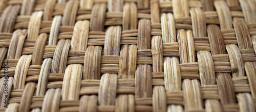 Bamboo texture and pattern