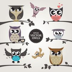 Vector owls