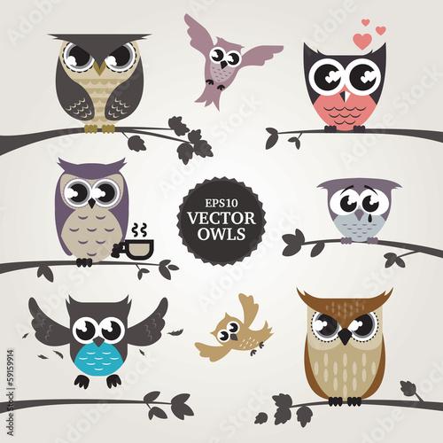 Fototapeta Vector owls