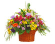 Flower bouquet arrangement centerpiece in wicker basket isolated