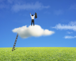 Cheered businessman standing on cloud