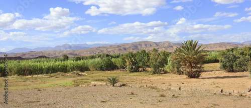 Morocco,oasis in valley of the river Dades