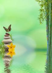 concept nature détente, bien-être, relaxation