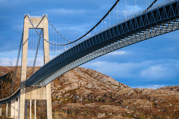 Typical automobile cable-stayed bridge