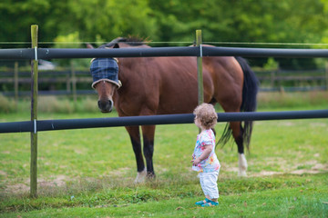 Little baby girl playing with a horse on a farm in summer field