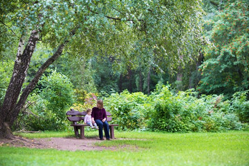 Grandmother and baby girl in a park on a bench under a tree