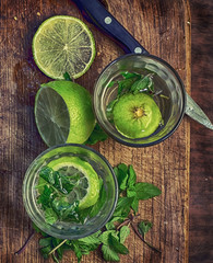 ingredients for cooking Mojito