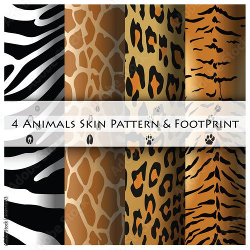 Animals Skin Pattern and Footprint