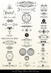 set of vintage calligraphic ornaments