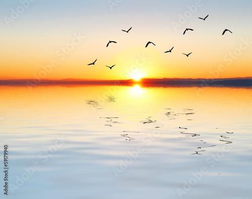 Fotobehang Een Hoekje om te Dromen buscando la puesta de sol