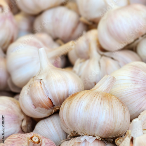 Dry garlic grouped in a pile  square composition