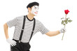 Male mime artist giving a rose flower